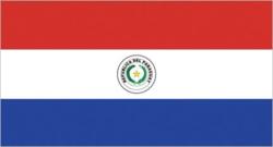 [전문가오피니언] 파라과이 선거제도 개정과 그 의미