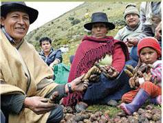 라틴아메리카 인구 연구