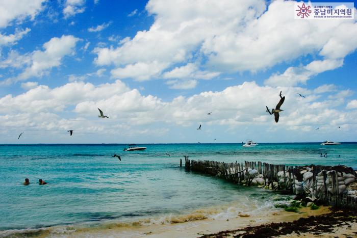 멕시코 이슬라 데 무헤레스 해변가